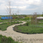 florini-2015-клумба-питомник-13