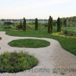 florini-2015-клумба-питомник-17
