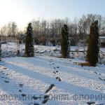 florini-2015-туя-смарагд-питомник-зима-клумба