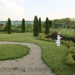 florini-2015-туя-спирея-клумба-питомник-барбарис-02
