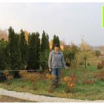 photo-florini-2014-10-10-189-клумба-питомник