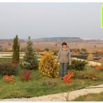 photo-florini-2014-10-10-20-хвойные-осень-клумба-питомник