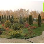 photo-florini-2014-10-10-22-хвойные-осень-клумба-питомник