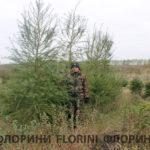 florini-2016-10-23-listvennitsa-01
