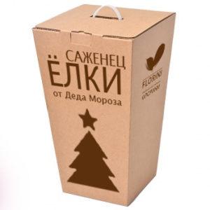 """""""Саженец ЁЛКИ"""" от Деда Мороза"""