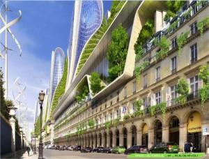 Контейнерное озеленение балконов, веранд, крыш, террасс.
